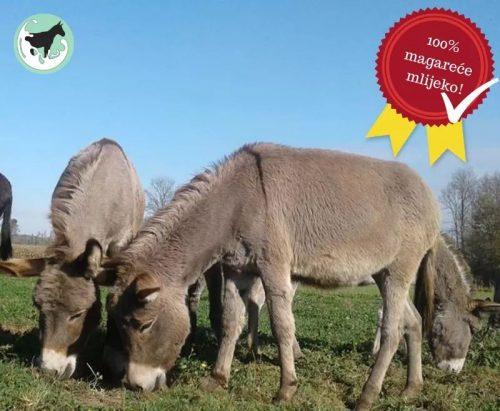 Magareće mlijeko OPG Trnak besplatna dostava Bjelovar