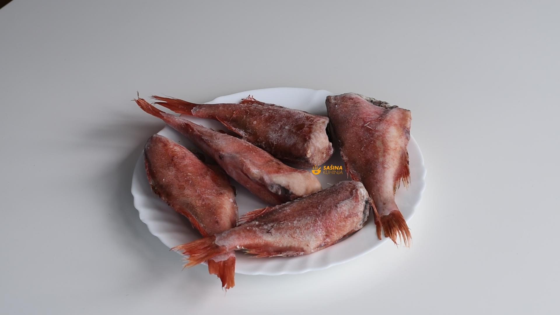 crveni bodečnjak riba